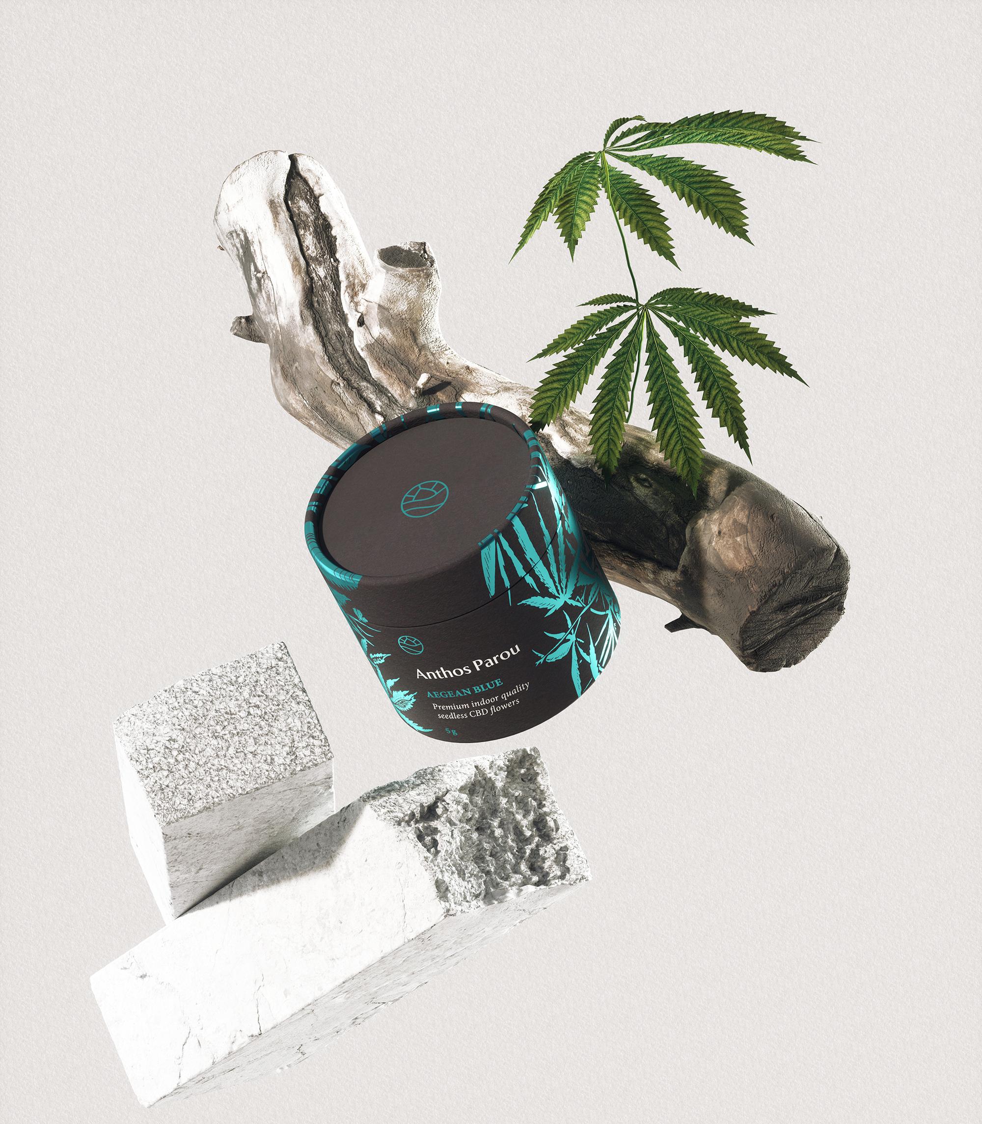 Anthos-Parou_Faze-Design_Styleframe_2